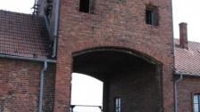 Setkání v Polsku (2007-08) Osvětim - koncentrační tábor