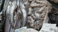 Setkání ve Španělsku (2008-09) Dary moře-tržnice